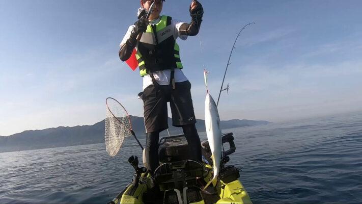 コンパクトフィッシングシステムで青物を釣り上げる。